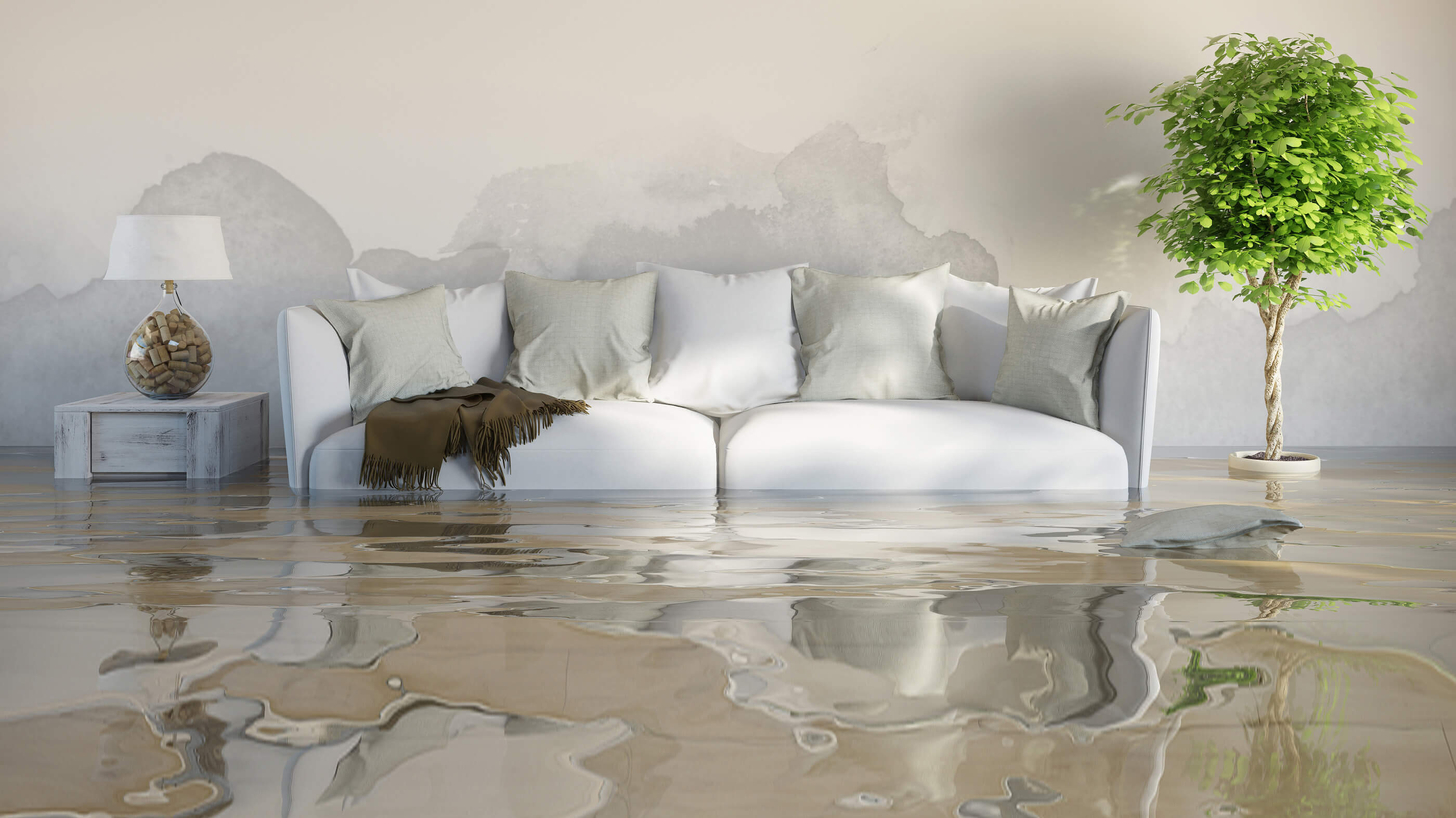 Pacific Beach Flood Service 858-229-7630 Water Damage Restoration