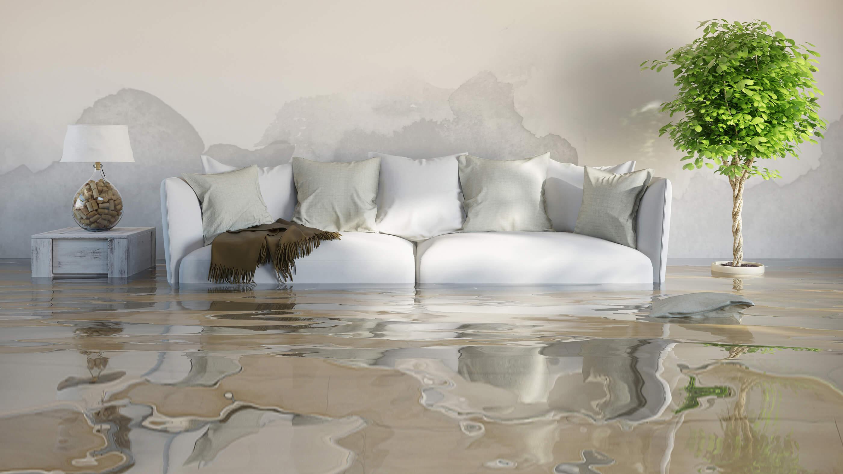 Carlsbad Flood Service 760-535-8319 Water Damage Repair